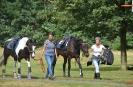 Algemene indruk ponyclub de Bosruiters_23